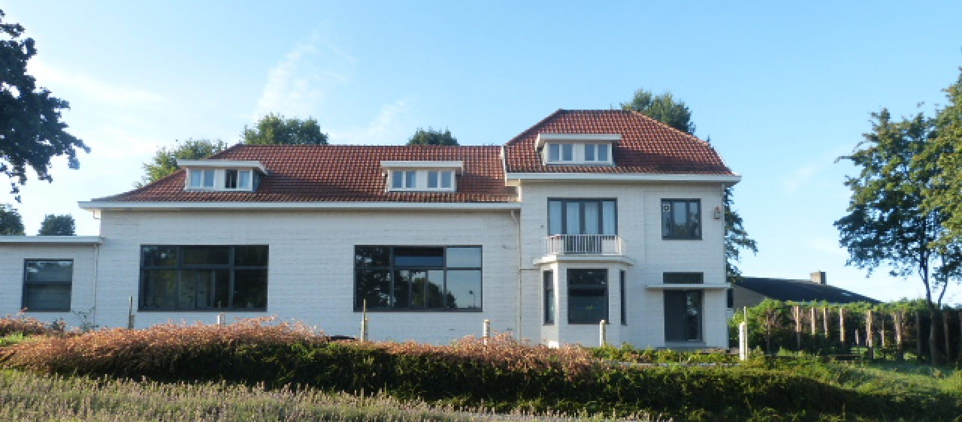 Zorg voor welzijn Limburg